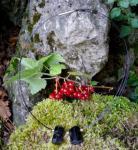 Kette Schutz und Harmonie - Schörl (schwarzer Turmalin)