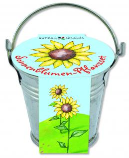 Sonnenblumen-Pflanzset im Zinkeimer, Gottes Liebe leuchtet