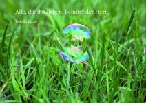 Postkarte Seifenblase aufm Gras (10 Stck)