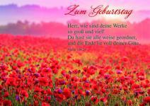 Geburtstagskarte mit Bibelwort Zum Geburtstag (6 Stck)