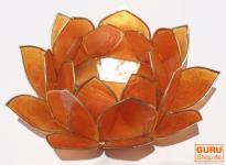 Lotus Teelicht Muschel 11 cm