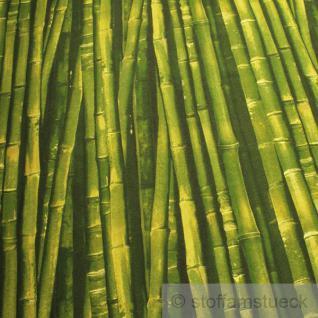 Stoff Baumwolle Polyester Bambus Bambusstange Fotodruck grün