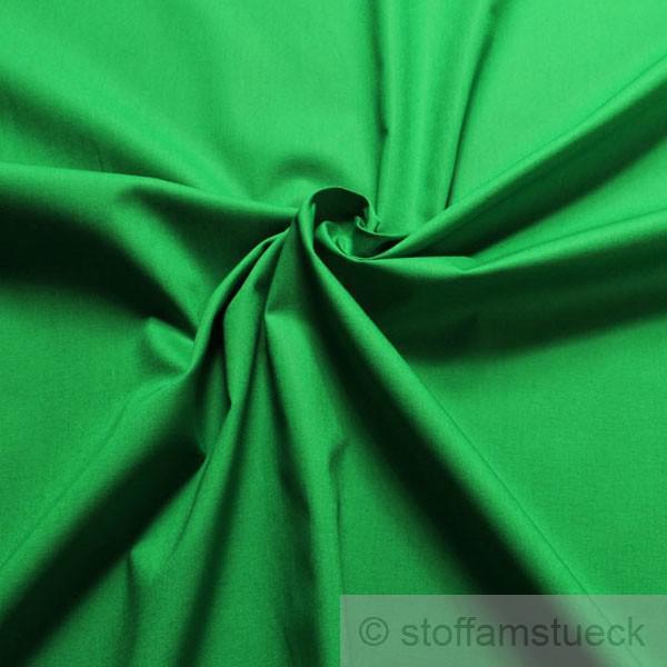 Stoff Baumwolle Lycra Leinwand grasgrün grün elastisch
