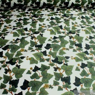 Stoff Baumwolle Polyester ecru Efeu Efeuranken Immergrün