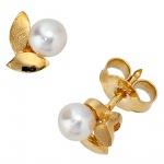 Ohrstecker 585 Gold Gelbgold mattiert 2 Akoya Perlen Ohrringe Perlenohrstecker