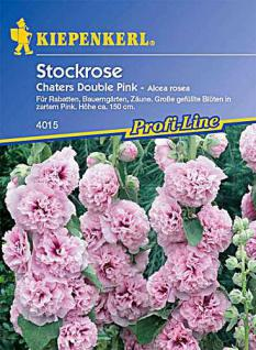 Kiepenkerl Alcea Chaters Pink