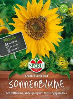 Sperli Sonnenblume SPERLI´s Early Bird 1