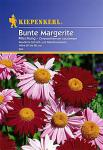 Kiepenkerl Chrysanthemum Bunte Mix
