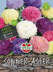 Sperli Sommer-Aster Ballon-Mix