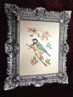 Bild mit Rahmen Silber Barock Gemälde Vogel Wandbild 45x38 Paradies Vogel B