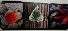 Bilder Leinwand Keilrahmen Bild Canvas BLUMEN BAUM BLÄTTER Landschafts 40X120