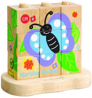Von der Raupe zum Schmetterling ? Stapelpuzzle