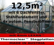 12, 5m² PROFI ALU Gewächshaus Glashaus Treibhaus inkl. Stahlfundament u. 6 Fenster, mit 6mm Hohlkammerstegplatten - (Platten MADE IN AUSTRIA/EU) inkl. 4 autom. Fensteröffner