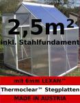 2, 5m² ALU Aluminium Gewächshaus Glashaus Tomatenhaus, 6mm Hohlkammerstegplatten - (Platten MADE IN AUSTRIA/EU) mit Stahlfundament und 1 Fenster