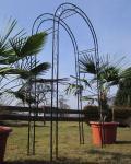 Eleganter Rosenbogen Rankhilfe aus Metall schwarz Mod.5109 doppelt verstrebt