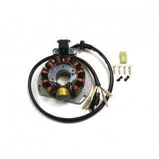 Lichtmaschine G146 Generator 2 Takter KTM: 125EXC, 200EXC, 300EXC GAS GAS