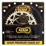 AFAM Kettensatz für HONDA NX 650 M, N, P, R, S RD02/RD04 650 CC (Baujahr 1991-1995)