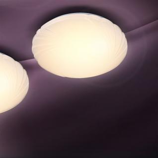 lampe muschel g nstig sicher kaufen bei yatego. Black Bedroom Furniture Sets. Home Design Ideas