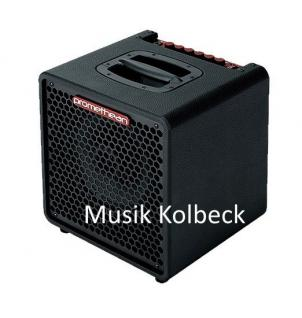 Promethean P3110 Bassverstärker,