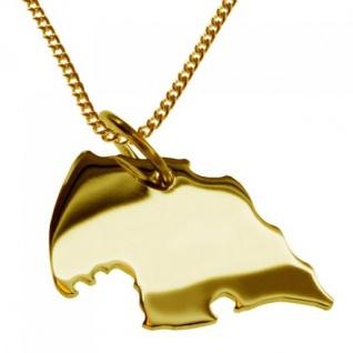 FEHMARN Kettenanhänger aus massiv 585 Gelbgold mit Halskette