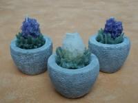 Kerzen LAVENDEL im Blumentopf, 3er Set
