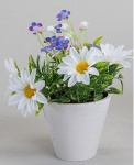 formano Frühlingsblüher im Porzellantöpfchen, weiß blau, 16 cm