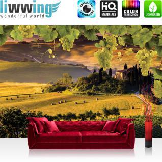 liwwing Vlies Fototapete 416x254cm PREMIUM PLUS Wand Foto Tapete Wand Bild Vliestapete - Architektur Tapete Weltall Planeten Welt Sterne Baustil Bauform rot - no. 1852