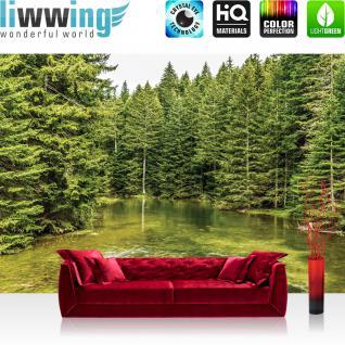 liwwing Vlies Fototapete 416x254cm PREMIUM PLUS Wand Foto Tapete Wand Bild Vliestapete - Natur Tapete Bäume Wald Fluss Wasser Natur grün - no. 1616