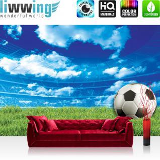 liwwing Vlies Fototapete 312x219cm PREMIUM PLUS Wand Foto Tapete Wand Bild Vliestapete - Sport Tapete Fussball Himmel Wiese blau - no. 2805