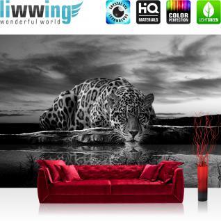 liwwing Vlies Fototapete 300x210 cm PREMIUM PLUS Wand Foto Tapete Wand Bild Vliestapete - Tiere Tapete Jaguar Sonnenuntergang Himmel Wasser schwarz - weiß - no. 614
