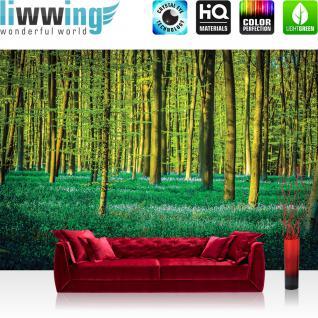 liwwing Fototapete 368x254 cm PREMIUM Wand Foto Tapete Wand Bild Papiertapete - Natur Tapete Wald Natur Bäume Wiese grün - no. 1333