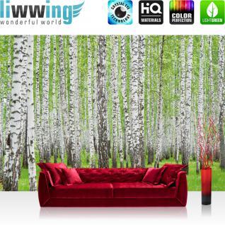 liwwing Fototapete 368x254 cm PREMIUM Wand Foto Tapete Wand Bild Papiertapete - Wald Tapete Birke Wald Bäume Natur grün weiß - no. 433