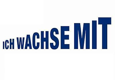 Inline Skate Kinder Rollschuhe HOT WHEEL 27-30 - Vorschau 2