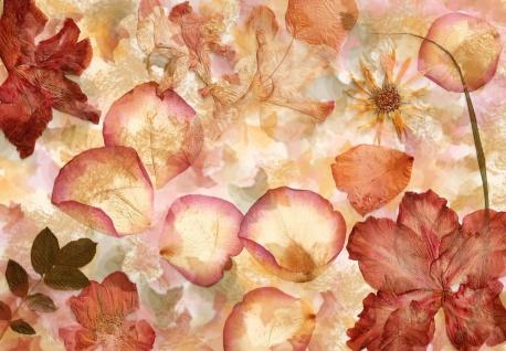 Vlies Fototapete Blumenblätter, Getrocknet