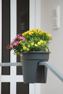 Flowerclip Blumentöpfe, 3er Set, anthrazit