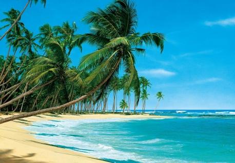 Fototapete Strand, Meer Und Palme, 8teilig