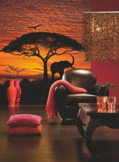 Fototapete African Sunset