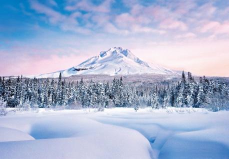 Fototapete Berge mit Schnee bedeckt, hinter Tannenwald