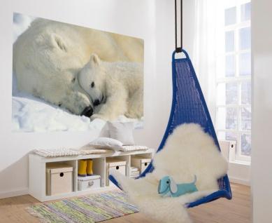 Fototapete Polar Bears NG