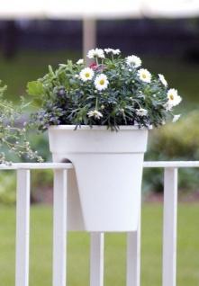 Flowerclip Blumentöpfe, 3er Set, weiß