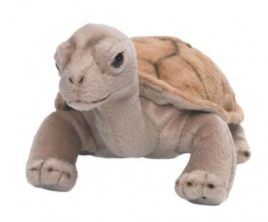 Plüschtier WWF Landschildkröte, 20cm