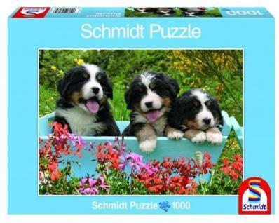 Welpen Puzzle, 1000 Teile Puzzlespass von Schmidt Spiele