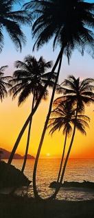 Türtapete Palmen, Sonnenuntergang, Meer