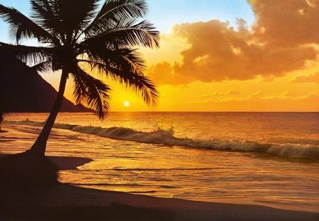 Fototapete Strand, mit Meer, Palme, Sonnenuntergang