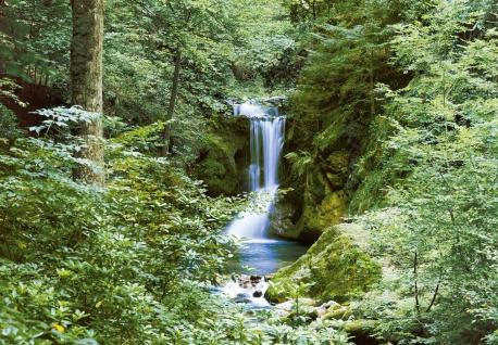 Fototapete Wasserfall im Wald, 8teilig