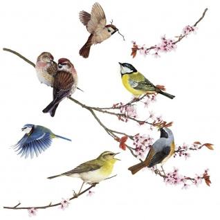 Window-Sticker Birds