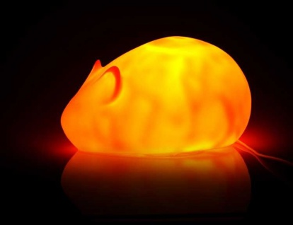 Nachtlicht Maus Farbe orange