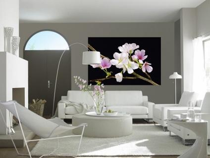 XXL Poster Kirschblüte - Vorschau 2