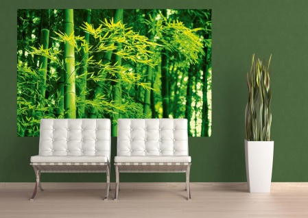 XXL Poster Bambus, Grün - Vorschau 2