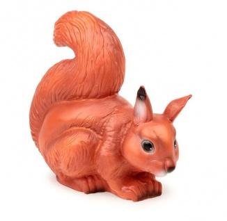 Nachtlicht Eichhörnchen
